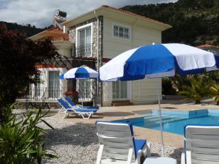 Beautiful Villa with Internet Access and A/C - Yesiluzumlu vacation rentals