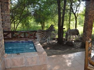 Fantastic Holiday home called The Wild Bunch - Marloth Park vacation rentals
