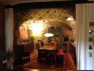 Historisches Natursteinhaus in ländlicher Umgebung - Lodeve vacation rentals