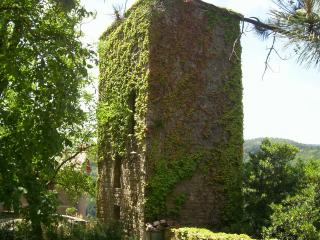 Unique holiday cottage in Tuscany, the Watch Tower - Stia vacation rentals