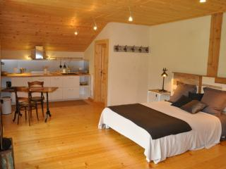 Nice Studio with Internet Access and Central Heating - Le Locle vacation rentals