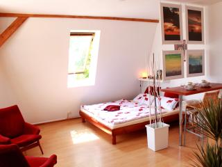 Attic quiet flat in center - Bohemia vacation rentals