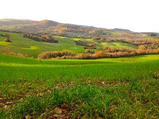 Il Chiesino B&B camera Volterra - Montecatini Val di Cecina vacation rentals