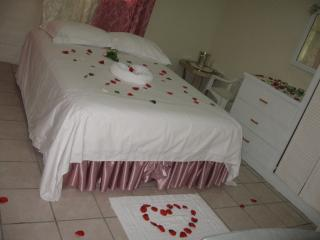 Spacious 6 bedroom Castries Apartment with Internet Access - Castries vacation rentals