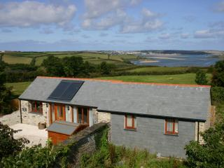 Perfect Barn with Internet Access and Outdoor Dining Area - Wadebridge vacation rentals