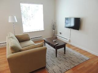 Gorgeous Furnished Studio on Beacon - Greater Boston vacation rentals