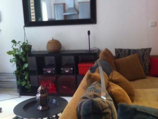 MEUBLE - Arcueil vacation rentals