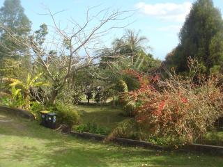 Location meublé T2 en rez de jardin Pont d'Yves - Le Tampon vacation rentals
