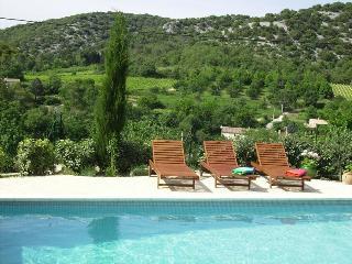 Chateaneuf - Saint-Andre-de-Roquepertuis vacation rentals