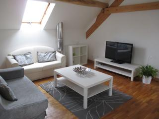 Perfect Condo with Central Heating and Parking Space in Luxeuil-les-Bains - Luxeuil-les-Bains vacation rentals
