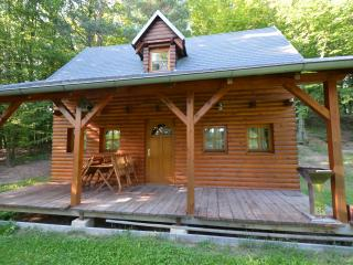 2 bedroom Cabin with Deck in Zlin - Zlin vacation rentals