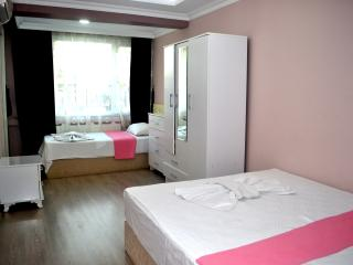 Family House in İstanbul / Sultanahmet - Istanbul vacation rentals