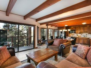 Timber Ridge 53 - Mammoth Ski In Ski Out Condo - Mammoth Lakes vacation rentals