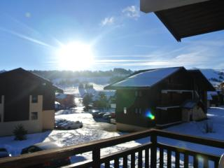 Nice Condo with Television and Central Heating - Les Saisies vacation rentals