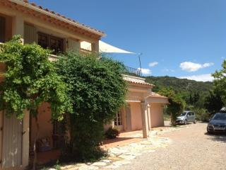 Spacious Villa with Internet Access and Central Heating - Vauvenargues vacation rentals
