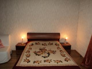 Studio apartment in the center of St. Petersburg - Saint Petersburg vacation rentals