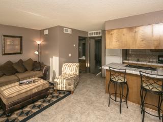Comfortable Condo with Internet Access and A/C - Lake Havasu City vacation rentals