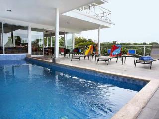 Monkey Magic! Incredible Ocean Views, Private Pool - Manuel Antonio National Park vacation rentals
