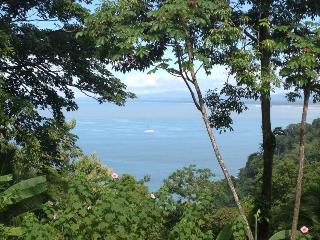 Superb Ocean View Villa, Ideal for Nature Lovers! - Manuel Antonio National Park vacation rentals