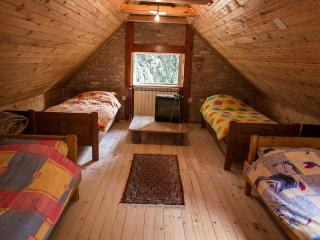 Green room,4 beds,mini bar,shared bathroom - Sremski Karlovci vacation rentals