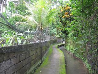 Cozy and centrally located house in Ubud - Ubud vacation rentals