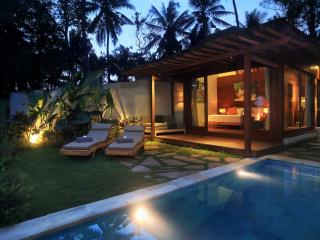 Samkhya Villas - Bali vacation rentals