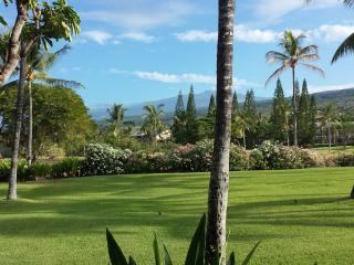 Kanaloa1302  - Steps to the Ocean ! 2B/2B - Kailua-Kona vacation rentals