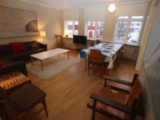 Reykjavik 3 Bedroom Apartment in Perfect Location - Reykjavik vacation rentals