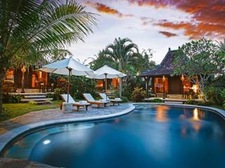 Rumah Capung Ubud Full Villa - Ubud vacation rentals
