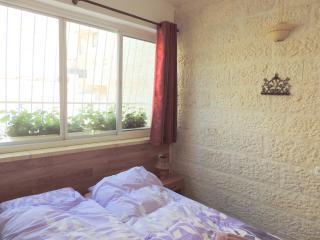 Pleasant Vacation Apartment in Religious Area - Nes Harim vacation rentals