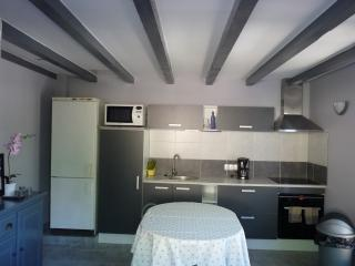 Nice Condo with Internet Access and Dishwasher - Le Plan-de-la-Tour vacation rentals