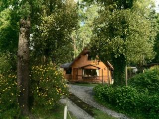 Pucon, Chile, / English; Portugues y Español - Pucon vacation rentals
