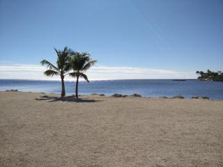Perfect Condo with Internet Access and A/C - Tavernier vacation rentals