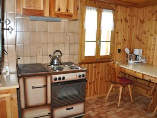 Nice Condo with Garden and Short Breaks Allowed - Visperterminen vacation rentals