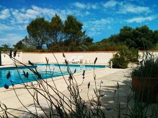 Domaine de Palatz: Gite Mirabelle - Carcassonne vacation rentals