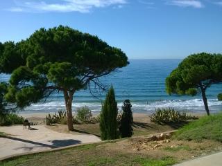 Apartamento salou vacaciones 9,playas, piscinas - Salou vacation rentals