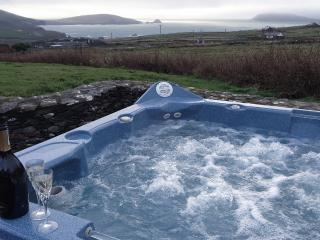 5466f6f2-5ab6-11e4-be27-90b11c2d735e - County Kerry vacation rentals