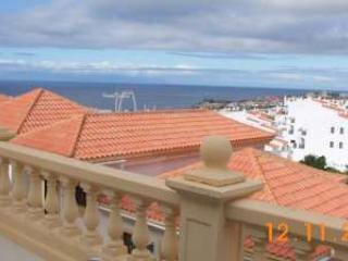 1 bedroom apartment in Torviscas Tenerife - Playa de las Americas vacation rentals