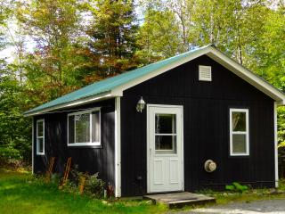 Cozy Cottage with Kettle and Satellite Or Cable TV - Sheffield vacation rentals