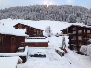 Morzine new 2 bed apartment ski in/ski out - Morzine-Avoriaz vacation rentals