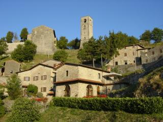 Nice Farmhouse Barn with Internet Access and Satellite Or Cable TV - Molazzana vacation rentals