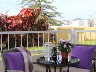 OLD TOWN in a walking distance, very comfortable, well equipped and spacey, wifi - Funchal vacation rentals