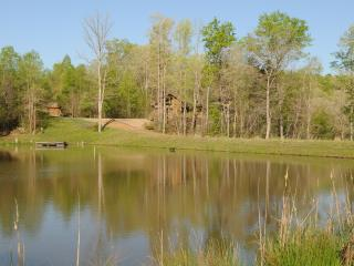 The River Cabin at Grove River Ranch - Gainesville vacation rentals