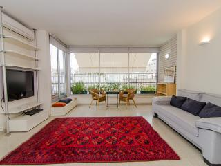 near Rabin Square, w/ 2 parking - Tel Aviv vacation rentals