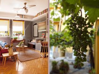 Elegant, quiet and cozy flat in historical area - Madrid vacation rentals