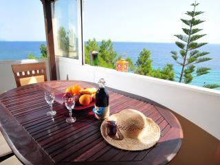 Nice 2 bedroom Tsilivi Condo with Internet Access - Tsilivi vacation rentals