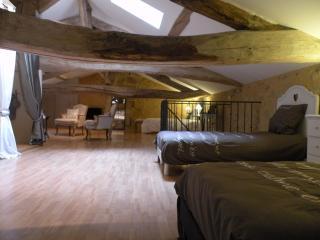 B&B de Charme grande Suite Parentale de 60m² 5Pers - Rauzan vacation rentals