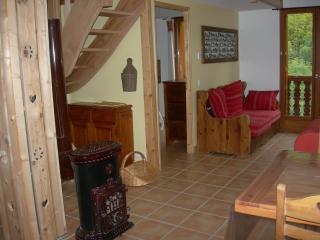 la Grange d'Articol, grand gîte Cascade 80m2 - Allemont vacation rentals