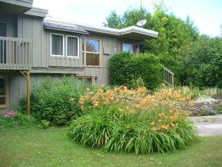 Trees and Trails Hideaway - Lion's Head vacation rentals