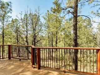 Rustic Cabin outside of Show Low! Wooded! - Show Low vacation rentals